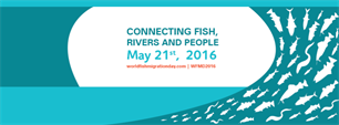 21 mei 2016 World Fish Migration Day